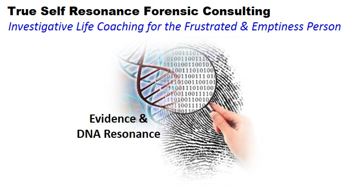 TSCODEForensicConsulting
